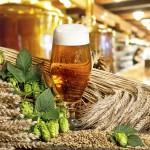 Tillverkning av öl